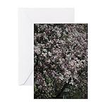 Magnolia Tree Greeting Cards