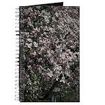 Magnolia Tree Journal