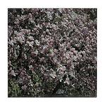 Magnolia Tree Tile Coaster