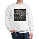 Magnolia Tree Sweatshirt