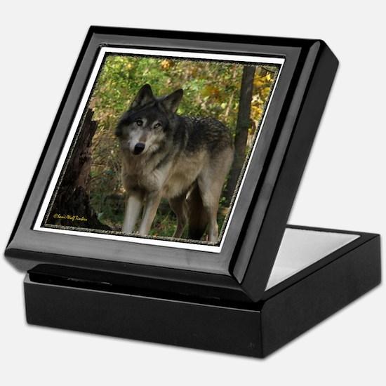 Wolf Spirit Keepsake Box