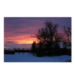 Winter Sunset 0020 Postcards (Package of 8)