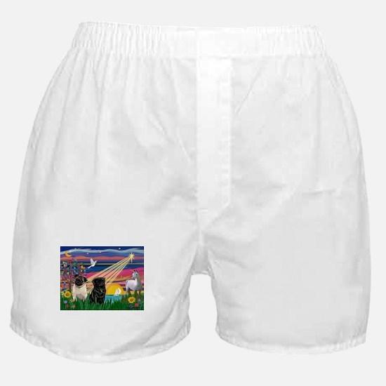 Pug Magical Night Boxer Shorts