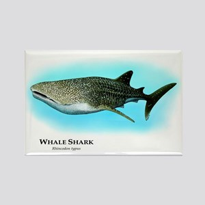Whale Shark Rectangle Magnet