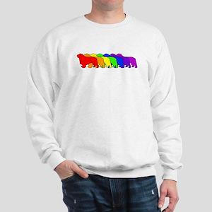 Rainbow Clumber Spaniel Sweatshirt
