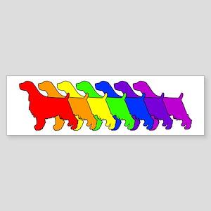 Rainbow Springer Bumper Sticker