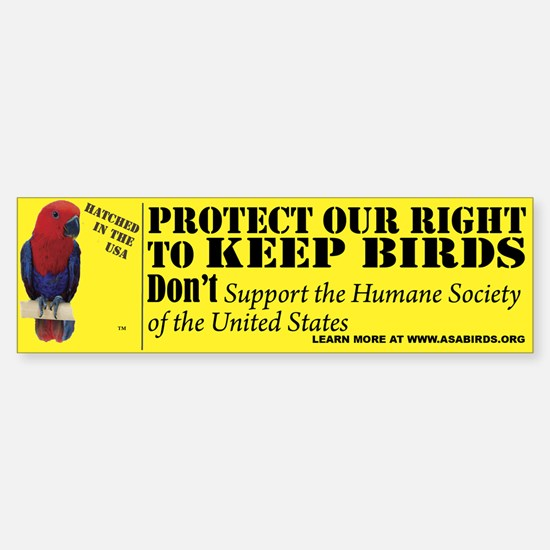 Protect Your Right to Keep Bi Bumper Bumper Bumper Sticker