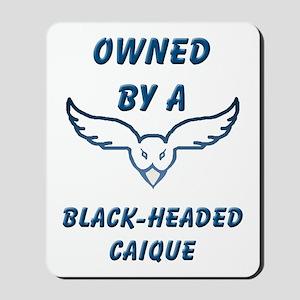 Black-headed Caique Mousepad