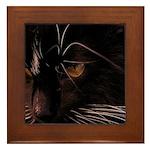 Cat in dreams Framed Tile