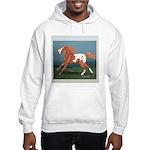 Free Spirit Appaloosa Hooded Sweatshirt