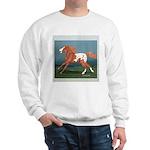 Free Spirit Appaloosa Sweatshirt