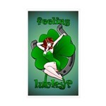 St. Patrick's Lucky Stickers 10 pk Sexy Pinup