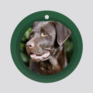 Chocolate Labrador Retriever Round Green Ornament