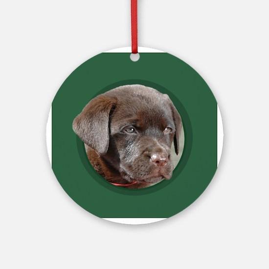 Chocolate Lab Puppy Round Green Ornament