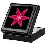 Pink Lily I Keepsake Box