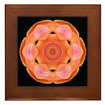 Orange Tulip I Framed Tile