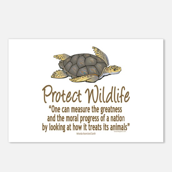 Protect Sea Turtles Postcards (Package of 8)