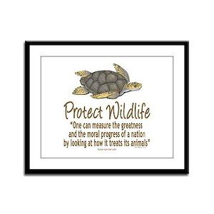 Protect Sea Turtles Framed Panel Print