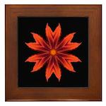 Orange Lily II Framed Tile