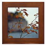 Fall Shoreline Framed Tile