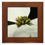 White Flower Framed Tile