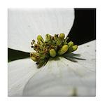 White Flower Ceramic Tiles & Coasters Tile Coa