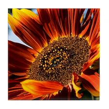 Sunflower Ceramic Tiles & Tile Coaster