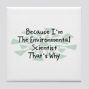 Because Environmental Scientist Tile Coaster