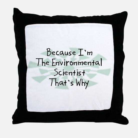 Because Environmental Scientist Throw Pillow
