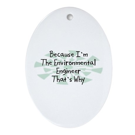 Because Environmental Engineer Oval Ornament