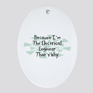 Because Electrical Engineer Oval Ornament