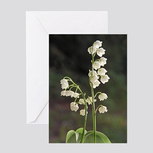 lily of Valley Greeting Card