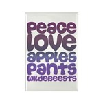 Apples and Pants Rectangle Magnet