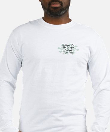 Because Budget Analyst Long Sleeve T-Shirt