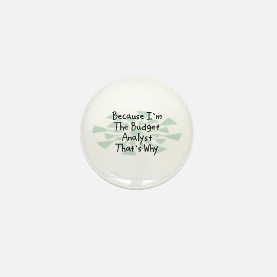 Because Budget Analyst Mini Button