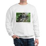 Pond Waterfall Sweatshirt