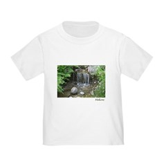 Pond Waterfall T