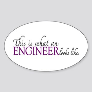 What an ENGINEER Looks Like Oval Sticker