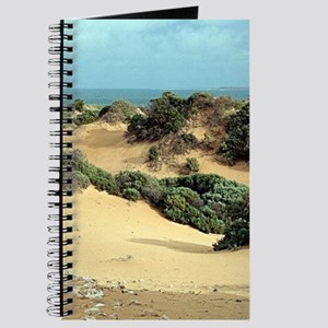 Windswept sand dunes, Australia Journal