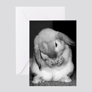 Bunny Birthday Wishes Greeting Card