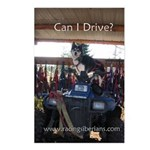 MCK Siberians Can I Drive? Postcard (Package of 8)