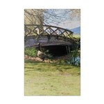 Canada Geese in the Park Poster Print