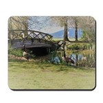 Canada Geese in the Park Mousepad