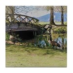 Canada Geese in the Park Tile Coaster