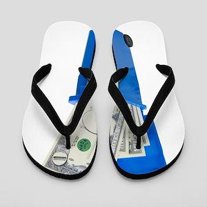 RecycleNoMoney053109 Flip Flops