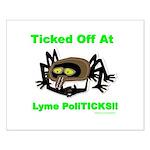 Lyme Disease Awareness Small Poster