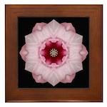 Hibiscus I Framed Tile