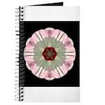 Hibiscus Moscheutos I Journal
