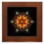Gazania III Framed Tile