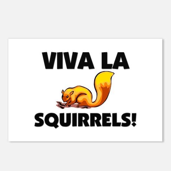 Viva La Squirrels Postcards (Package of 8)